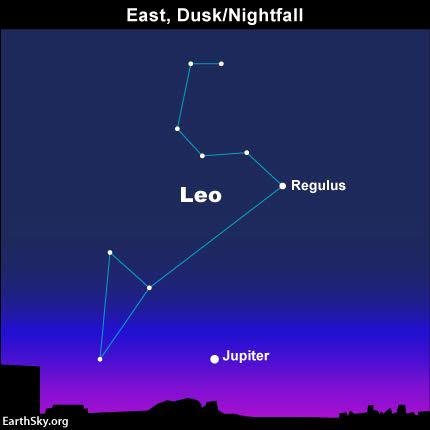 "Jupiter pops out in your eastern sky at dusk. As dusk deepens into night, watch for the star Regulus, the brightest in the constellation Leo, to dot the backwards question mark of stars known as ""The Sickle."""