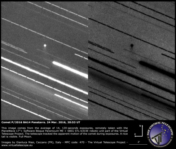 View larger. | Although most images show Comet P/2016 BA14 with an asteroid appearance, this one taken on March 24, 2016 shows a small tail. Credit: Gianluca Masi, Virtual Telescope Project - Italy.