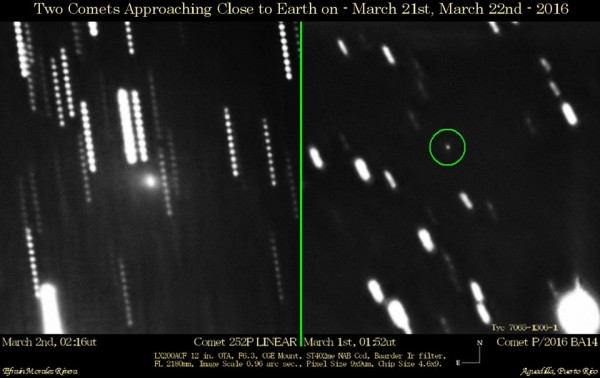 This new photo shows comet 252P/LINEAR on March 2 (left) and small comet P/2016 BA14 on March 1 (right). The twin comets were captured using a 12
