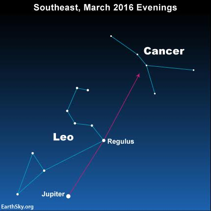For the next several months, use the dazzling planet Jupiter and the bright star Regulus to find the faint constellation Cancer the Crab.