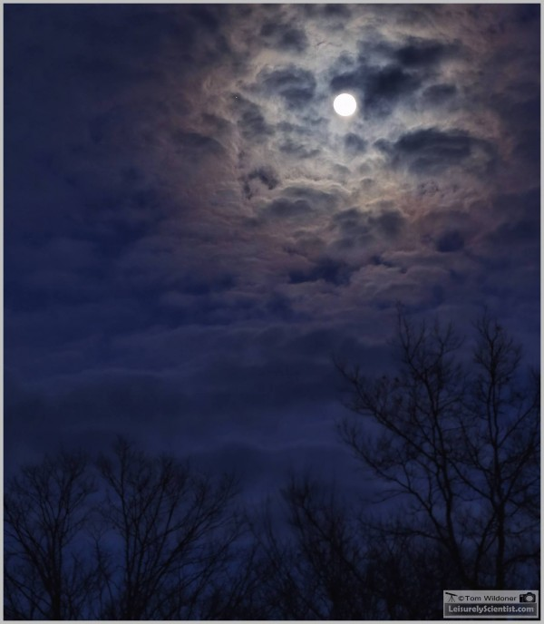 Tom Wildoner caught the moon and Jupiter on March 21 from Pennsylvania, too.  He wrote: