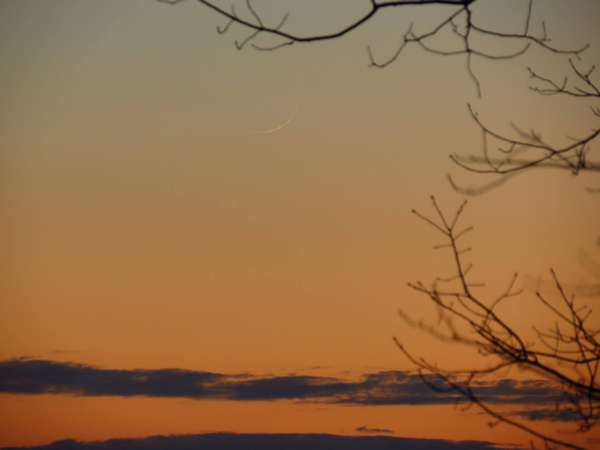 View larger. Karen Houle of Connecticut managed to capture the whisker-thin evening crescent on March 9, 2016. Karen told us,