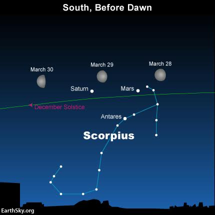 Watch the moon move past the planets Mars and Saturn, plus the star Antares over the next several mornings. The moon swings to the north of the December solstice point on March 30. The green line depicts the ecliptic - Earth's orbital plane projected onto the constellations of the Zodiac.