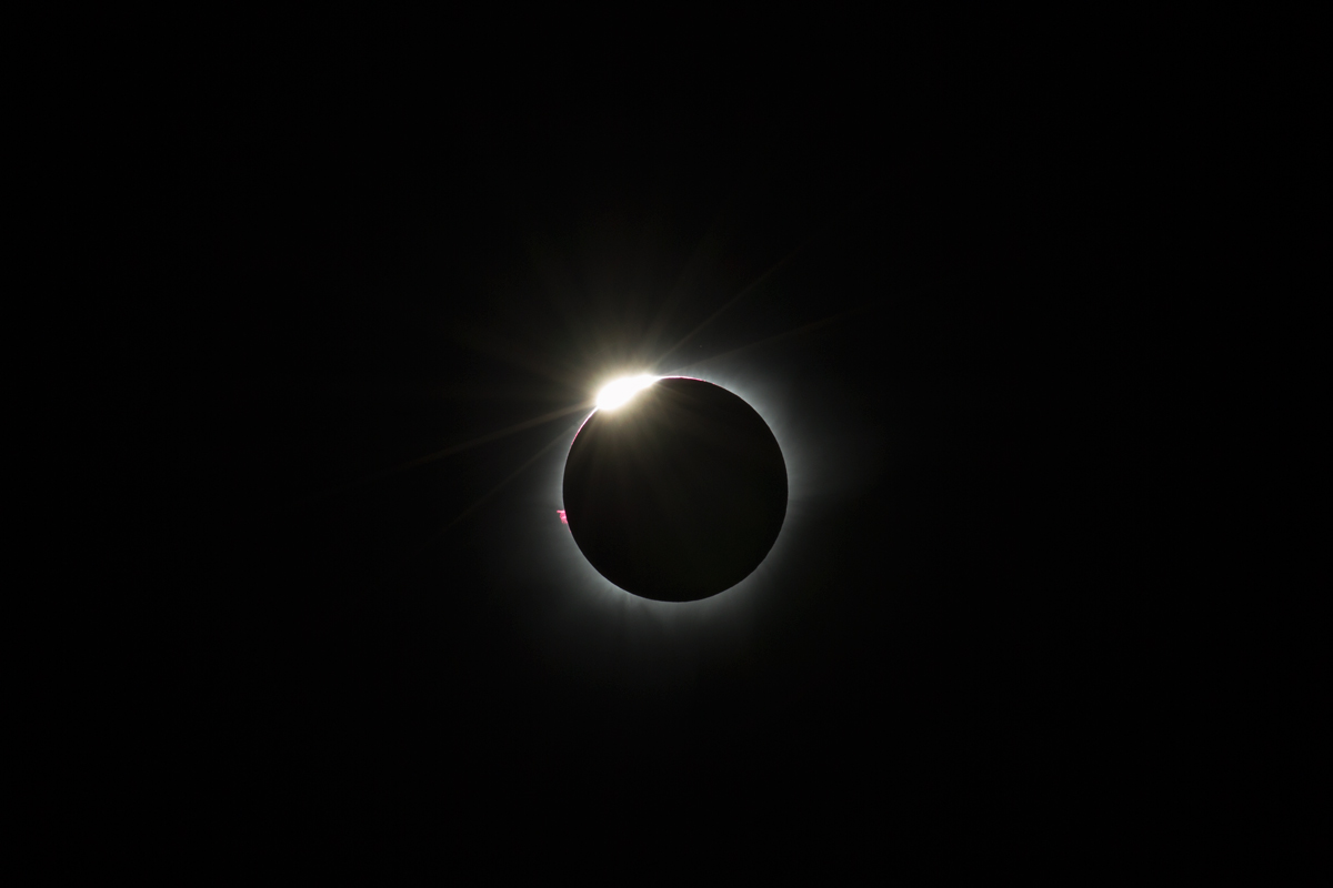 image Total eclipse of the heart