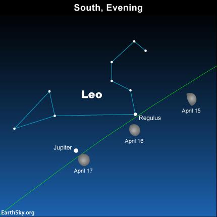 Use the moon to find the the planet Jupiter and the star Regulus on April 15, 16 and 17. The green line depicts the ecliptic  - Earth's orbital plane projected onto the constellations of the Zodiac. Read more