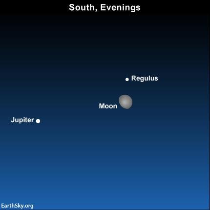 2016-april-16-moon-jupiter-regulus