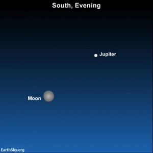 This evening, on April 18, it will be much easier to catch the brilliant planet Jupiter near the moon than Mercury near the horizon..