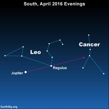 This year, in 2016, you can use the dazzling planet Jupiter and the bright star Regulus to star-hop to the faint constellation Cancer the Crab.