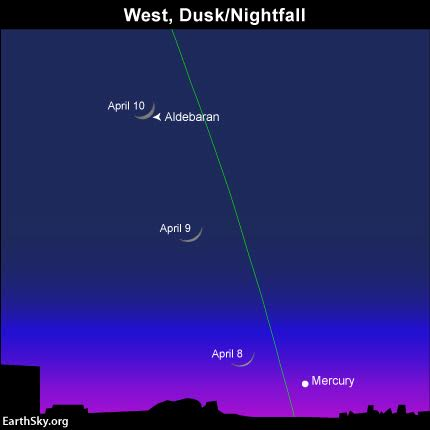 The lit side of the waxing crescent moon points in the direction of the planet Mercury. Binoculars may be helpful for seeking out Mercury after sunset. Good luck!