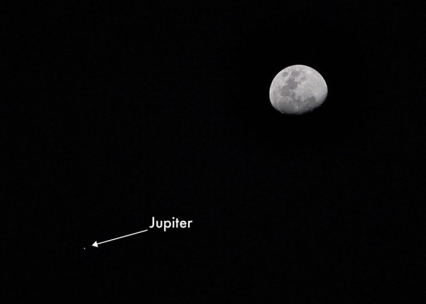 A telescopic view of the moon and Jupiter on April 17, from TF Harper.