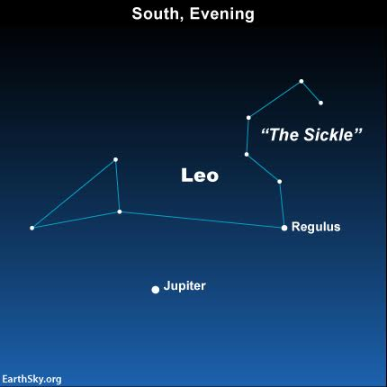 Around the world, Jupiter reaches its high point for the night around mid-evening. From the Southern Hemisphere, however, Jupiter appears in the northern sky, above an