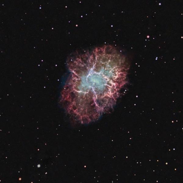 Crab Nebula. Photo by Mark Shelton.