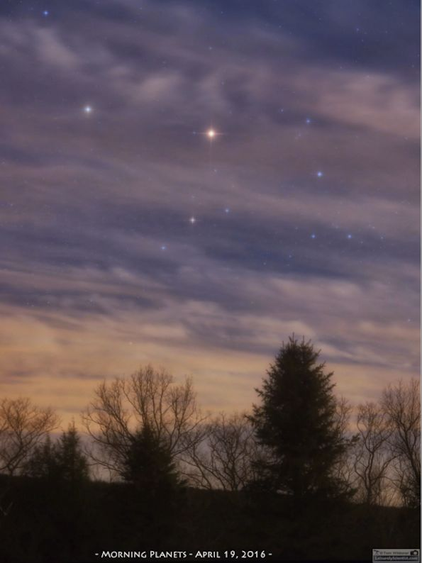 The morning planets and the bright star Antares on April 19, 2016. Photo by Tom Wildoner. Visit Tom at LeisurelyScientist.com