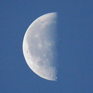 The last quarter moon rises in the middle of the night and sets in the middle of the day. Photo by Lilliana Mendez of North Bergen, New Jersey.