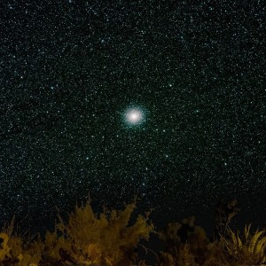 Omega Centauri on March 14, 2016 by Rob Pettengill in Terlingua, Texas.