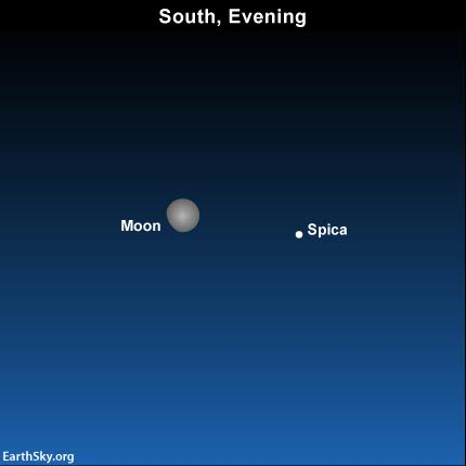 2016-may-18-moon-and-spica
