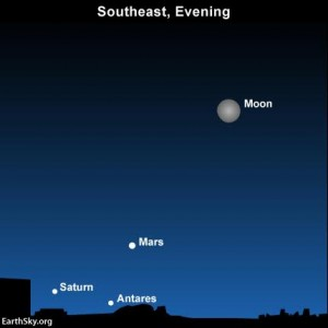 Look in your southeast sky  after darkness falls to see the planets Mars and Saturn plus the star Antares beneath tonight's waxing gibbous moon.