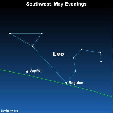 Look for the dazzling planet Jupiter to light up the constellation Leo the Lion in the western evening sky.