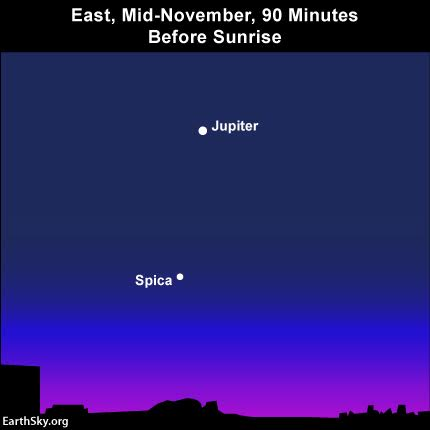 When Jupiter and Spica swing over to the morning sky later this year, in 2016, look for Jupiter in the vicinity of Spica, Virgo's brightest star.