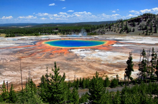 Grand Prismatic Spring in Yellowstone; such hot pools often bubble with undiscovered microbes. Photo credit: NPS