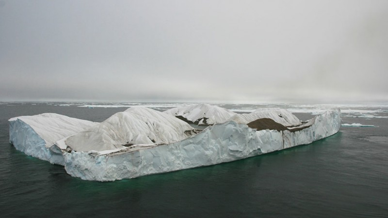 The iceberg where the gulls were breeding. Image via Polar Biology.