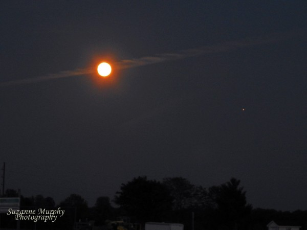 Moon and Mars on May 21, 2016 from Suzanne Murphy.