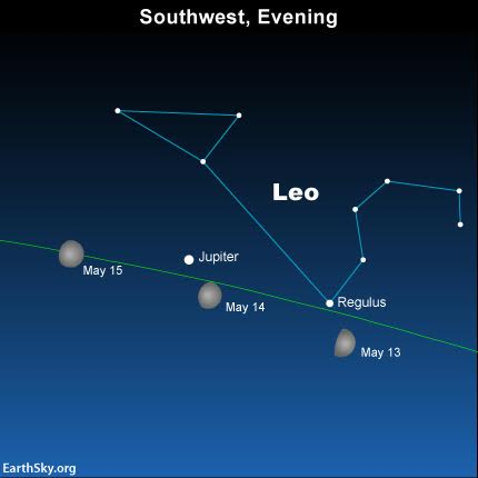Watch for the waxing moon to move eastward in front of the constellation Leo the Lion over the next several days. The green line depicts the ecliptic - the sun's yearly path, and the moon's monthly path, in front of the constellations of the Zodiac.