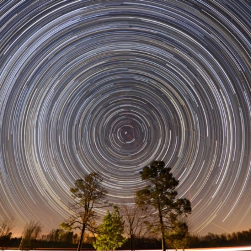 Very many bright concentric circles in sky around a bright irregular dot, trees in foreground.
