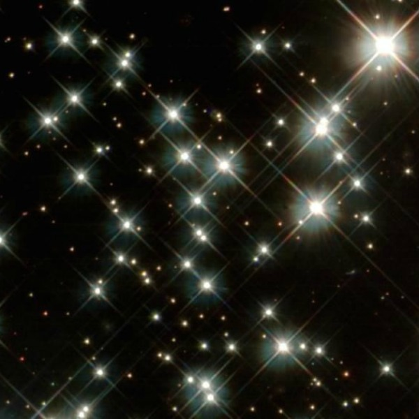 Star Light, Star Bright, the story of Sparkle and Ray
