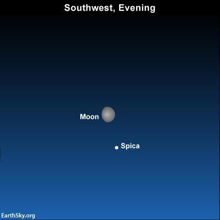2016-june-14-moon-and-spica