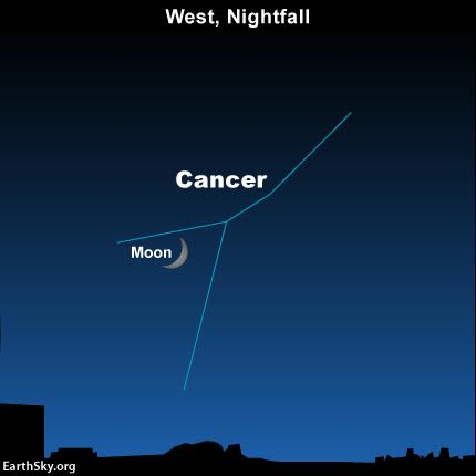 2016-june-8-moon-and-cancer