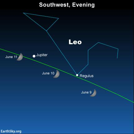 Also, as darkness falls on June 9, look for the waxing crescent moon close to Regulus, the brightest star in the constellation Leo the Lion.