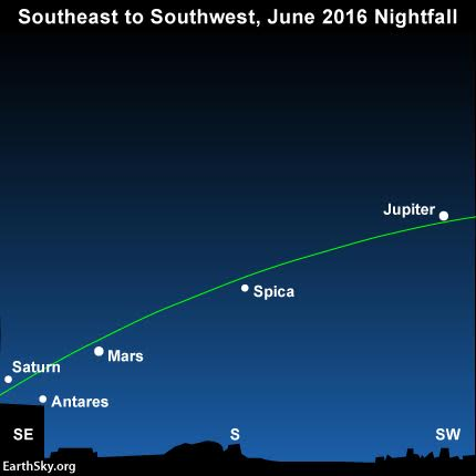 View larger.Three planets -  Jupiter, Mars and Saturn - adorn the evening sky throughout June 2016. Look for the bright star Spica between Jupiter and Mars. Read more