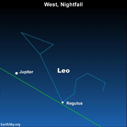 Look low in the west at nightfall for the dazzling planet Jupiter and the star Regulus, the brightest in the constellation Leo the Lion.