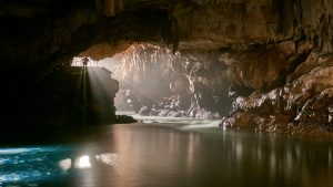 The underground Pivka River flows through Postojna Cave, home of the rare endangered Olm salamander. Image credit: Iztok Medja, Postojna Cave.