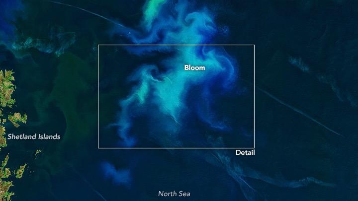 Image via NASA Earth Observatory image by Joshua Stevens, using Landsat data from the U.S. Geological Survey.