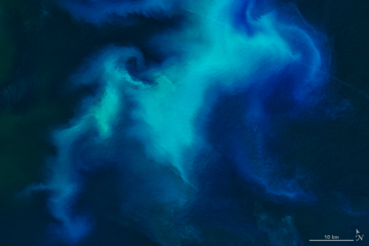 Detail of the image above, via NASA Earth Observatory image by Joshua Stevens, using Landsat data from the U.S. Geological Survey.