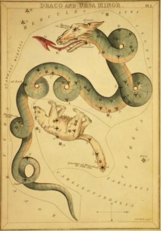Antique drawing of writhing snake-like dragon with bright red arrow-shaped tongue.