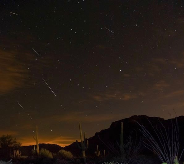 Several meteor trails over a desert landscape with tall cacti.