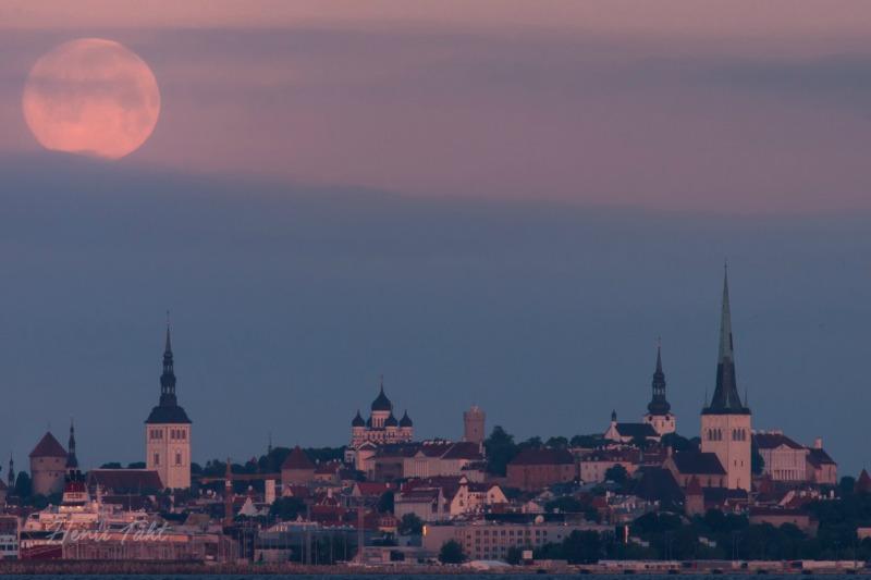 Henri Täht took this photo in Estonia.  He wrote,