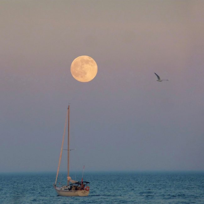 Steve Thamer in Toronto caught this moon on the evening of June 19.