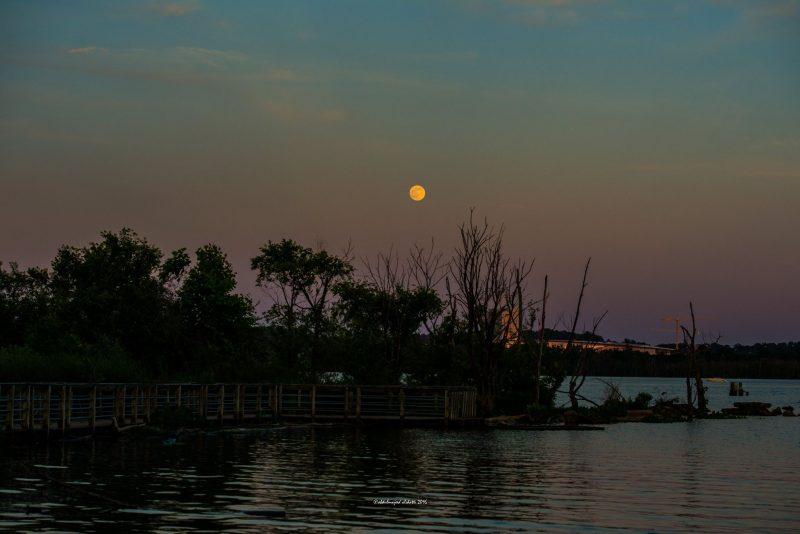Nearly full moon ascending over the Potomac, Washington DC, June 19, 2016 via EarthSky Facebook friend Abdumajeed Alshatti