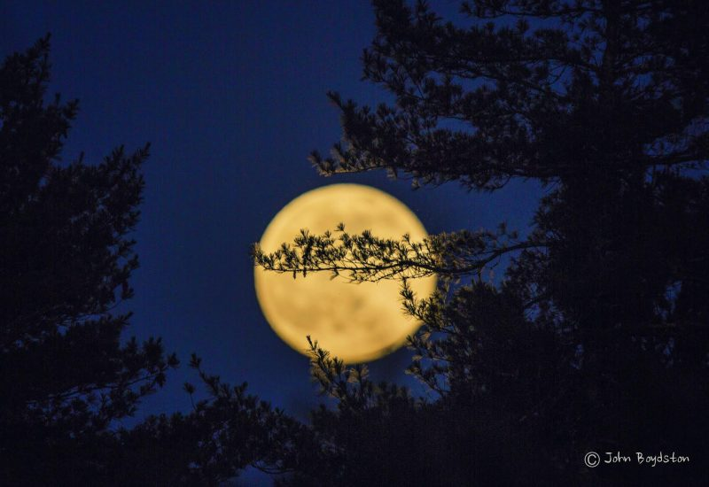 John Boydston caught this nearly full moon on the evening of June 19, 2016 from Blue Ridge, Georgia.