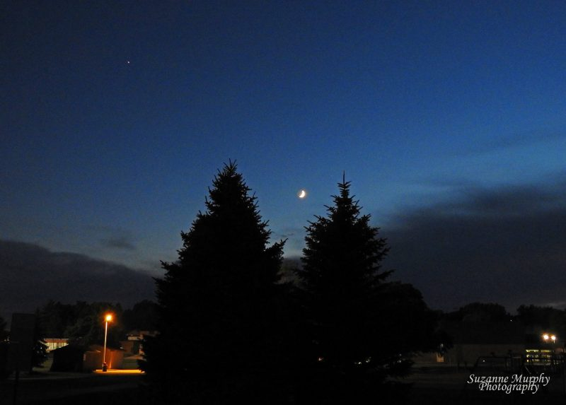 The best thing about the July, 2016 waxing crescent moon? It's near Jupiter! Photo from July by Suzanne Murphy Photography in Wisconsin. Thanks, Suzanne!