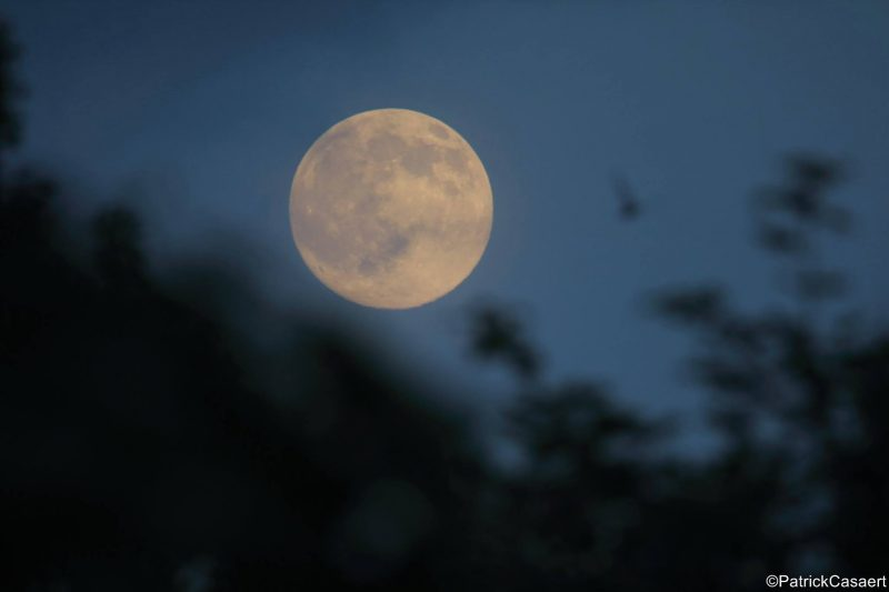 Patrick Casaert of La Lune The Moon caught the rising nearly full moon on June 19.