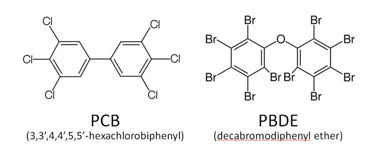 Example chemical structures of a PCB and PBDE compound. Image Credit: D.E. Conners, EarthSky (structures via Wikimedia Commons).