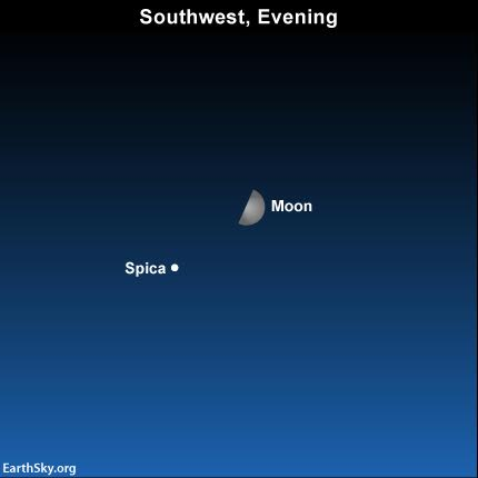 2016-july-11-moon-and-spica