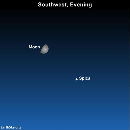 2016-july-12-moon-spica