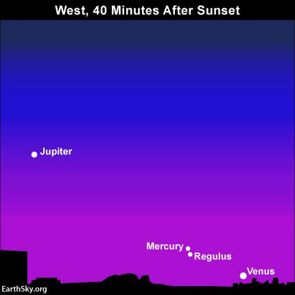 From the Northern Hemisphere, Mercury is above and to the left of Venus. Mercury and Regulus will be in conjunction on July 30. Note that Jupiter - second-brightest planet after Venus - is also in the west after sunset.