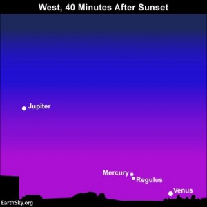 For a big sky watching challenge, try finding the planet Mercury in conjunction with the star Regulus on July 30, 2016. Mercury and Regulus will be in between the dazzling planets Venus and Jupiter, the third and fourth brightest celestial bodies, respectively, after the sun and moon. Read more.